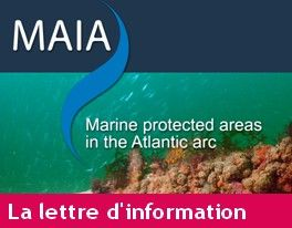 Logo NL gestionnaires AMP Atlantique - MAIA / AAMP